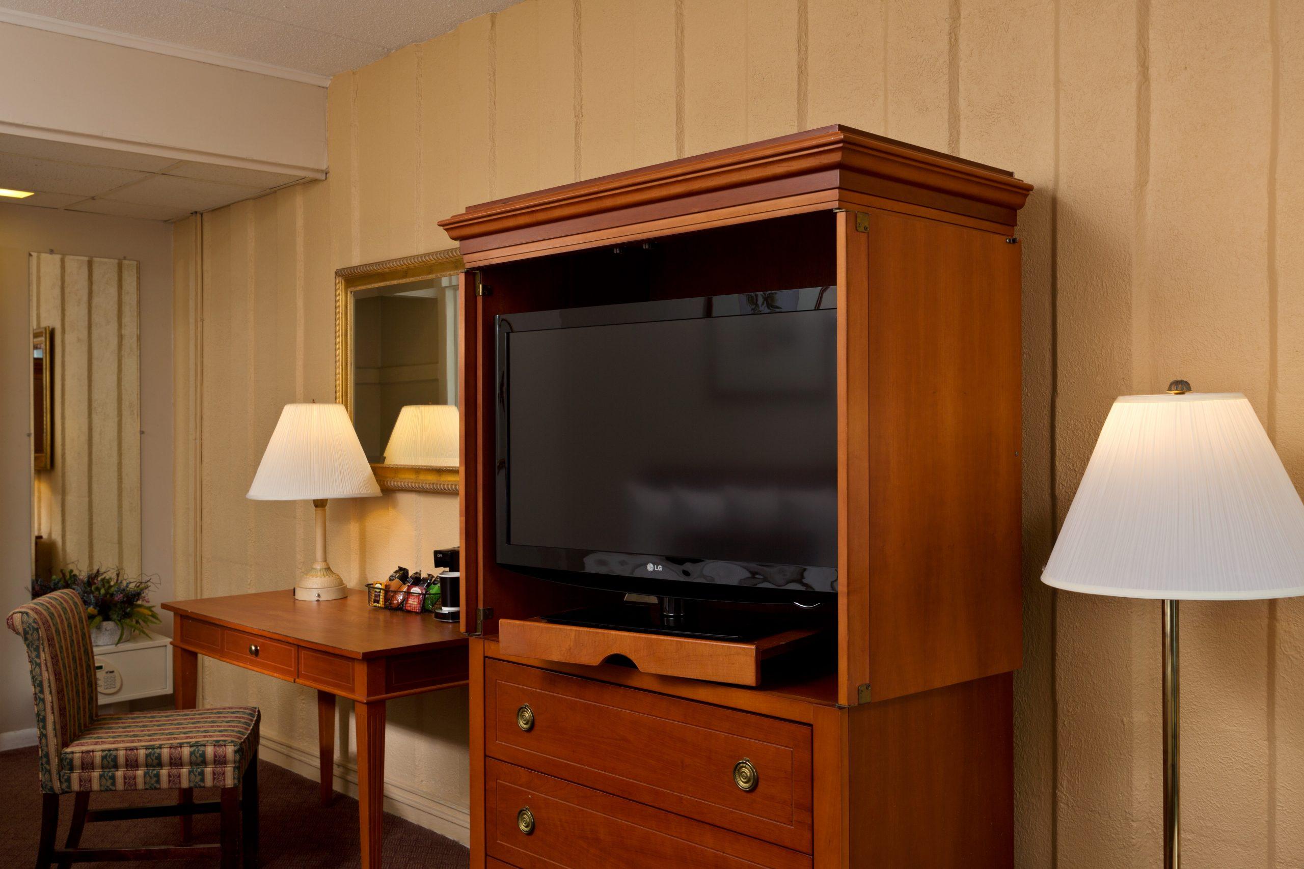 Standard Room Living Space